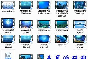 深海海底世界唯美视频素材25款