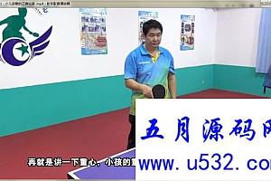 乒乓球教学视频100集