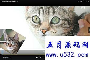 彩铅手绘动物教程31集