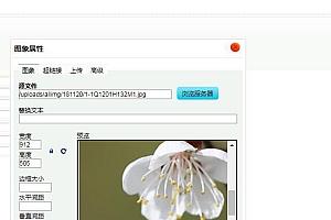 dedecms后台编辑器图片上传框乱码解决方法