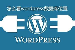 怎么看wordpress数据库位置